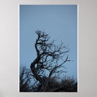 Sagebrush against a winter sky poster