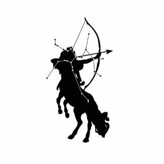 Sagittarius Constellation/Zodiac Photo Sculpture