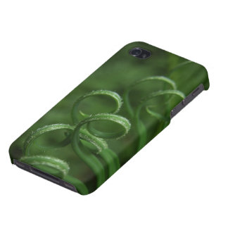 Sago Palm Frond Macro iPhone Case iPhone 4 Cover