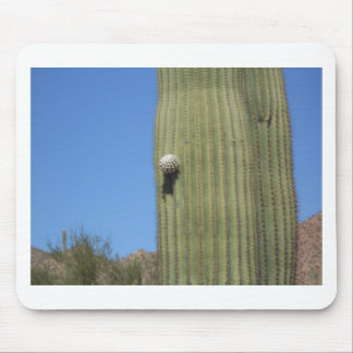 Saguaro Bud Mouse Pad
