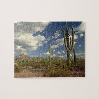 Saguaro cacti and Rio Mountain. Oragan Pipe Jigsaw Puzzle
