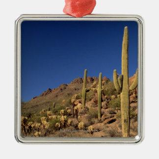 Saguaro cacti and Tucson Mountains, Tucson Christmas Ornament