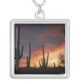 saguaro cacti, Carnegiea gigantea, after Silver Plated Necklace