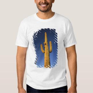 Saguaro cacti t-shirt