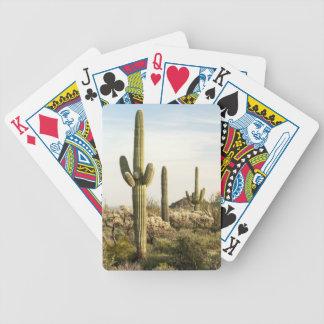 Saguaro Cactus, Arizona,USA Bicycle Playing Cards