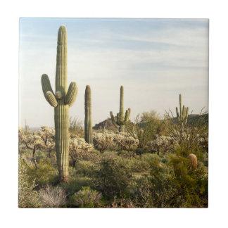 Saguaro Cactus, Arizona,USA Tile
