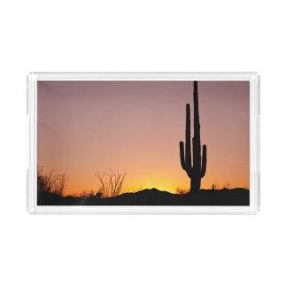 Saguaro Cactus at Sunset Acrylic Tray