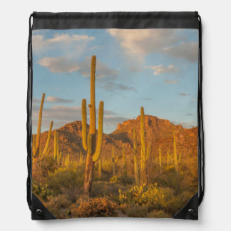 Saguaro cactus at sunset, Arizona Drawstring Bag