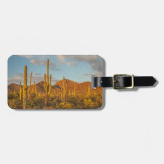 Saguaro cactus at sunset, Arizona Luggage Tag