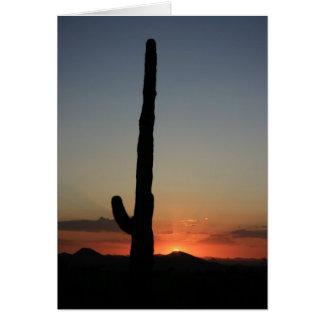 Saguaro Cactus at Sunset Greeting Card