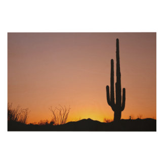 Saguaro Cactus at Sunset Wood Wall Art