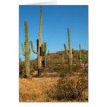 Saguaro cactus cards