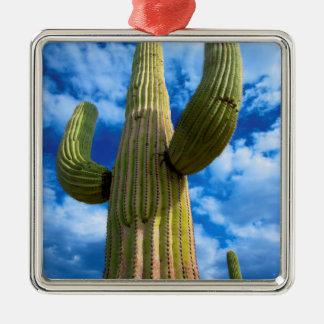 Saguaro cactus portrait, Arizona Silver-Colored Square Decoration