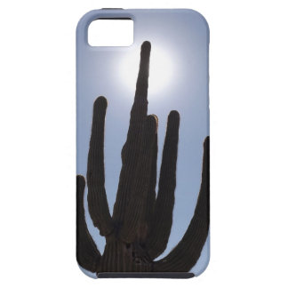 saguaro cactus with sun backdrop iPhone 5 cover