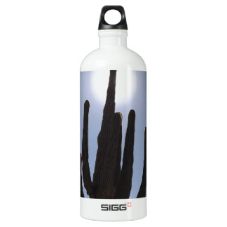 saguaro cactus with sun backdrop water bottle