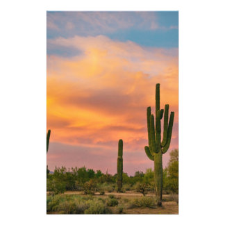 Saguaro Desert Life Personalised Stationery