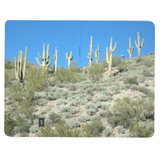 Saguaro Hillside Journal