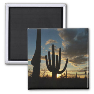 Saguaro Sunset II Arizona Desert Landscape Square Magnet