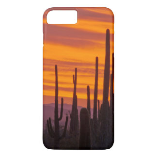 Saguaro, sunset, Saguaro National Park iPhone 8 Plus/7 Plus Case