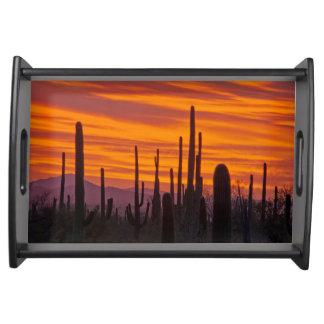 Saguaro, sunset, Saguaro National Park Serving Tray