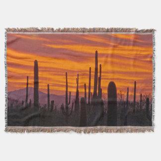Saguaro, sunset, Saguaro National Park Throw Blanket