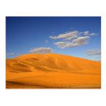 Saharan desert in Morocco Postcard