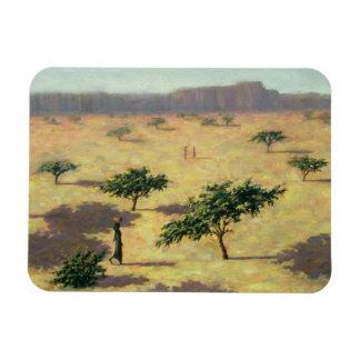 Sahelian Landscape Mali 1991 Rectangular Photo Magnet