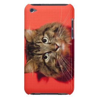 Saiberian cat iPod touch Case-Mate case