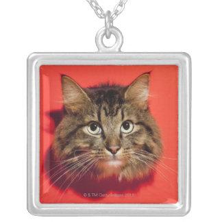 Saiberian cat square pendant necklace