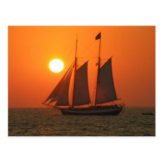 Sail into the Sunset Postcard