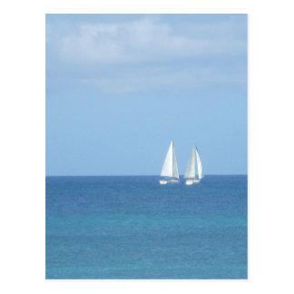 Sailboat Race Postcard
