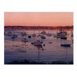 Sailboats and Sunsets Postcard