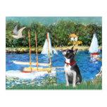 Sailboats - Boston Terrier #@ Postcard