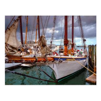 Sailboats Morred At Key West Postcard