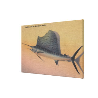 Sailfish from Gulf Stream, FloridaFlorida Gallery Wrapped Canvas