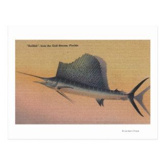 Sailfish from Gulf Stream, FloridaFlorida Postcard