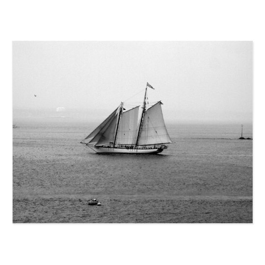 Sailing Ship Postcard