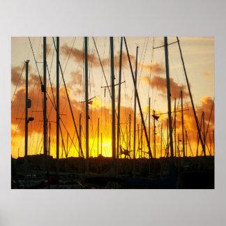 Sails of Msida Marina Poster