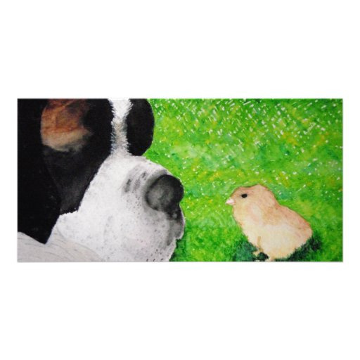 Saint Bernard and Baby Chick Photo Cards