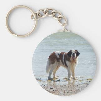 Saint Bernard at the beach keychain, gift idea Basic Round Button Key Ring