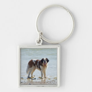 Saint Bernard at the beach keychain, gift idea Silver-Colored Square Key Ring