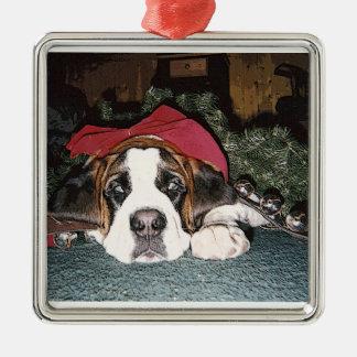 Saint Bernard Christmas Ornament