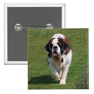 Saint Bernard dog beautiful photo button pin