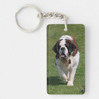 Saint Bernard dog beautiful photo Double-Sided Rectangular Acrylic Key Ring