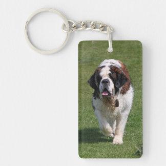 Saint Bernard dog beautiful photo Rectangle Acrylic Key Chain
