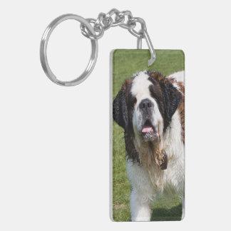Saint Bernard dog beautiful photo Acrylic Key Chains