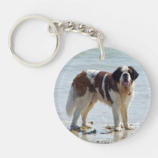 Saint Bernard dog beautiful photo Double-Sided Round Acrylic Keychain