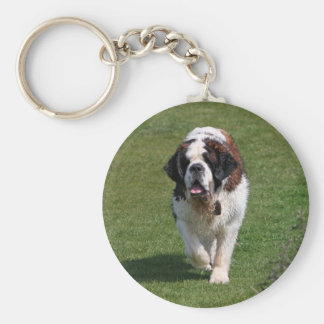 Saint Bernard dog beautiful photo keychain