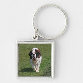 Saint Bernard dog beautiful photo keychain