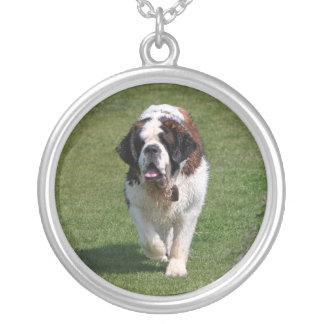 Saint Bernard dog beautiful photo necklace